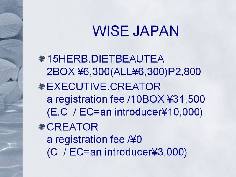 WISE JAPAN02